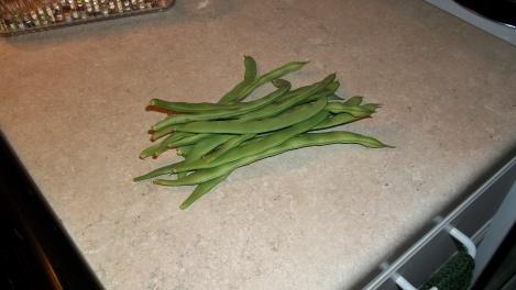 heirloom green beans