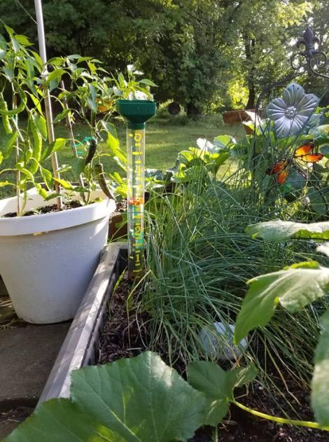 gardening challenges